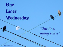 One Liner Wednesday – Short and Sweet