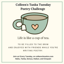 """COLLEEN'S WEEKLY #TANKA TUESDAY #POETRY CHALLENGE NO. 75: """"PATIENCE & GREEN""""#SNYNONYMSONLY"""