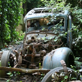 Car Reclaimed by Nature
