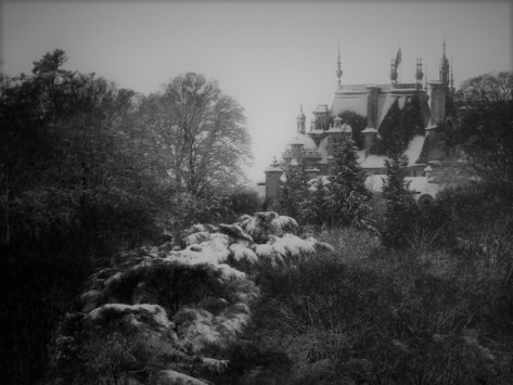 Heirloom – #writephoto