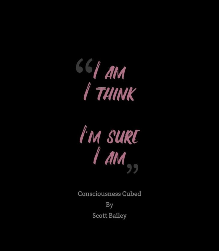 Consciousness Cubed